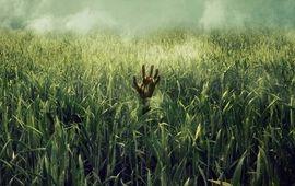 Dans les hautes herbes : critique de l'enfer vert
