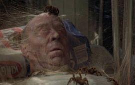 Arachnophobie : le classique horrifique de Disney qu'il faut revoir (absolument)