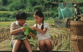 Hou Hsiao Hsien : Pour fêter l'été, Carlotta propose une rétrospective au cinéma
