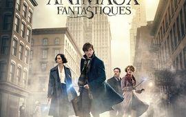 Les Animaux Fantastiques : Tous les liens à la saga Harry Potter réunis en une seule vidéo