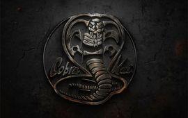 Cobra Kai, la suite de Karaté Kid en série, dévoile trois teasers consacrés aux personnages