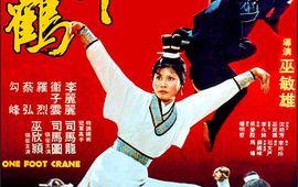 Furie du maître du kung-fu