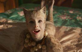 Cats : gérer les trous de balle des chats a été un enfer, apparemment