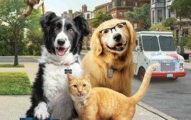 Comme chiens et chats 3 : Patte dans la patte !