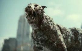 Army of the Dead : Zack Snyder encense Netflix (et tacle Warner en passant)