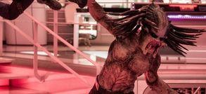 The Predator : cinq raisons d'être surexcités (et 5 autres d'avoir très peur)