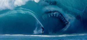 L'année du requin : Kad Merad va se la jouer Les Dents de la mer dans le premier film de requin français