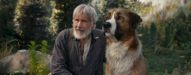 photo, Harrison Ford