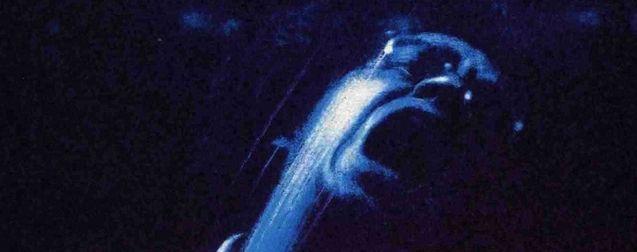 L'Échelle de Jacob : 30 ans après, l'inspirateur de Silent Hill terrifie encore