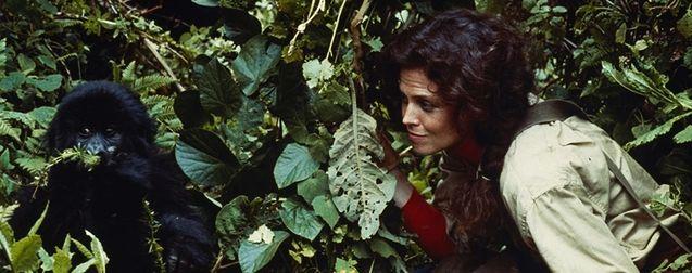 Michael Apted : mort du réalisateur de James Bond, Le Monde de Narnia et Gorilles dans la brume
