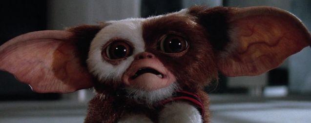 Gremlins 3 : Chris Columbus donne des nouvelles rassurantes pour le retour des Mogwais