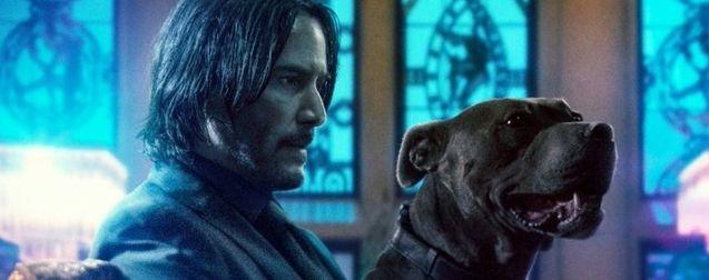 Le réalisateur de John Wick : Parabellum et Keanu Reeves annoncent que la saga n'est peut-être pas terminée
