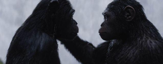 Un crossover entre Kong et la Planète des Singes va voir le jour !