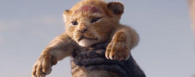 photo le roi lion