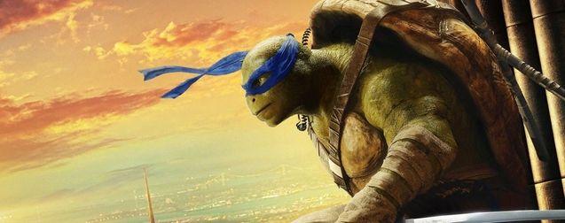 Photo Affiche Leonardo