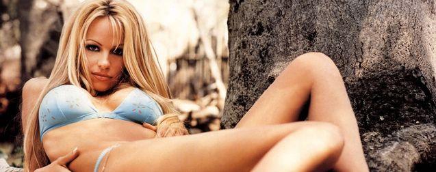 Pamela Anderson contre le gavage des oies : Alerte à l'assemblée nationale