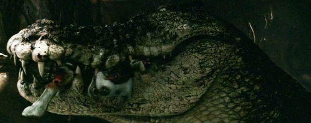 Le mal-aimé : Solitaire, le Jaws du film de croco que personne n'a vu