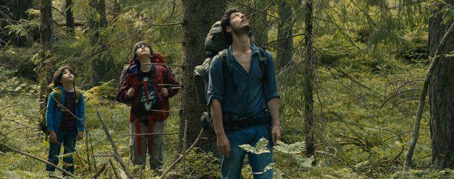 Dans la forêt : critique d'un fascinant cauchemar