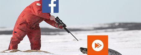 Facebook Ecran Large