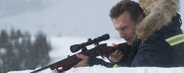 photo, Liam Neeson