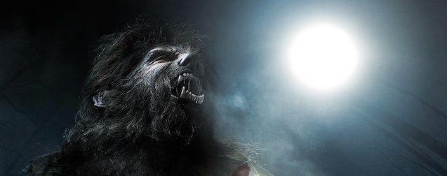 Wolfman : le reboot avec Ryan Gosling sera mené par le réalisateur d'Invisible Man