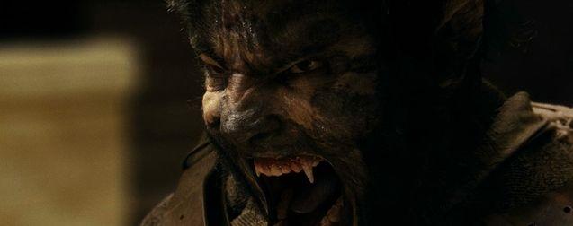 Wolfman : le remake change de réalisateur après le départ de Leigh Whannel (Invisible Man)