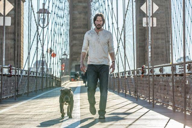 Keanu Reeves new dog