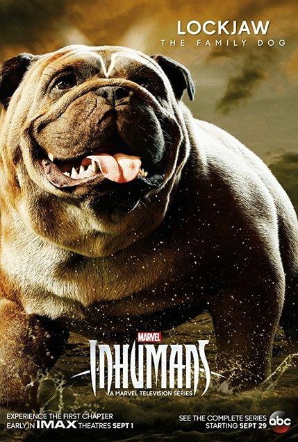 Photo The Inhumans saison 1