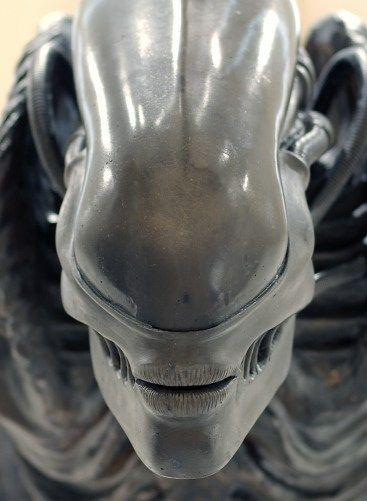 Photo Alien 3