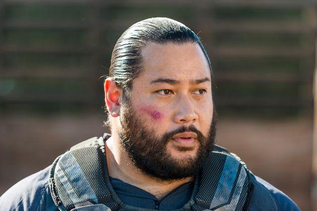 Photo The Walking Dead saison 8