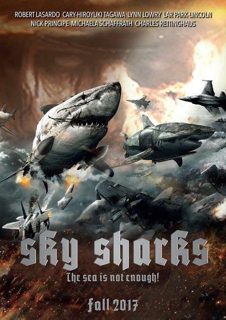 photo sky shark