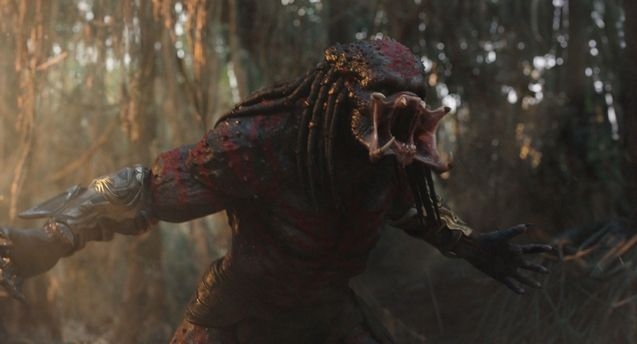photo The Predator