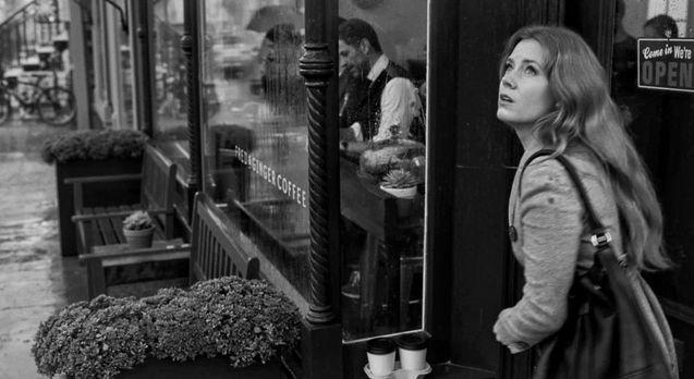 photo, Amy Adams
