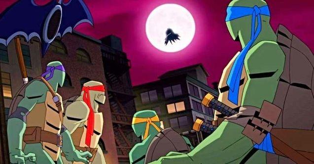 photo Batman vs TMNT