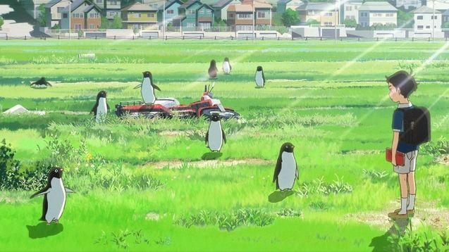 photo Mystère des pingouins