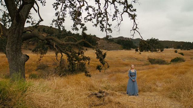 photo, Evan Rachel Wood