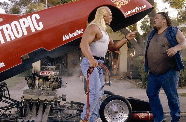 Hulk Hogan, suburban commando
