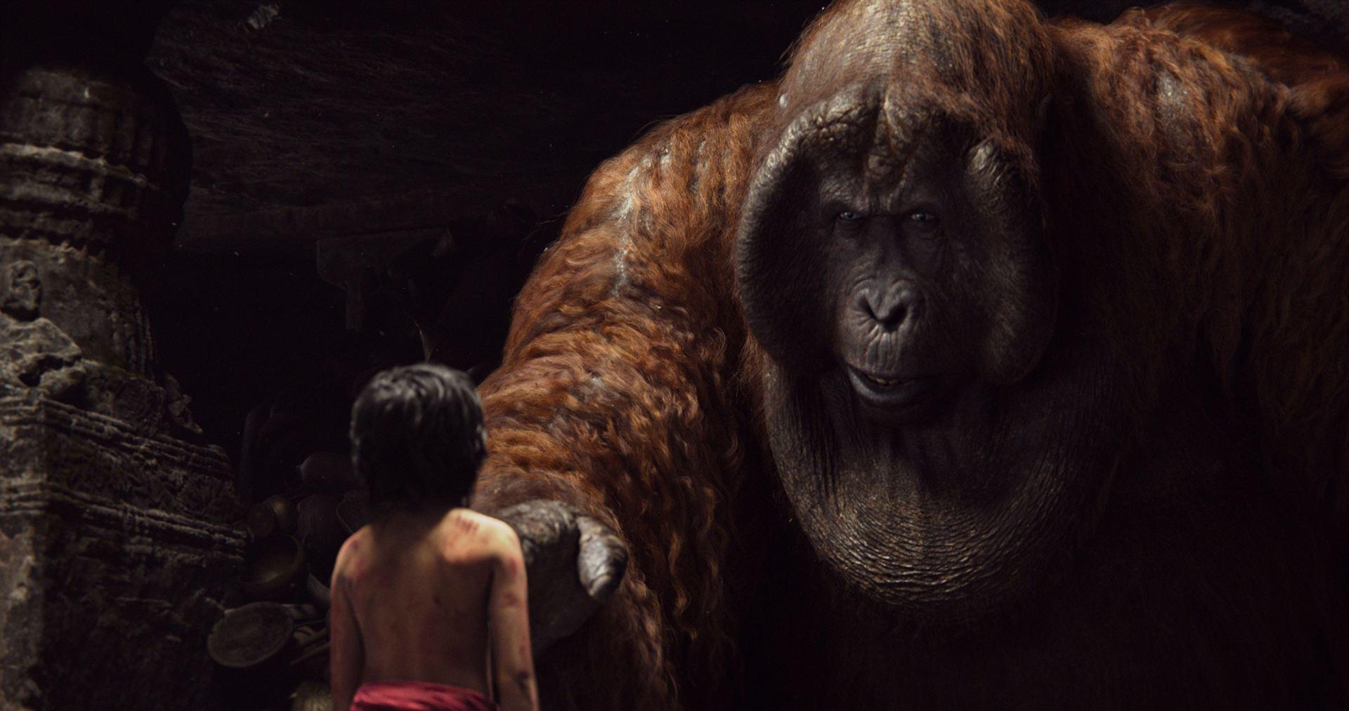 Le livre de la jungle film 2016 for Le livre de