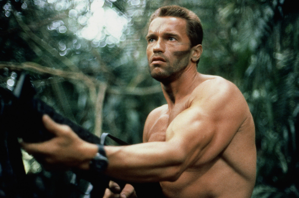 essays for arnold schwarzenegger Arnold schwarzenegger is an american actor popularly known as 'terminator' and is also the former governor of california this biography provides detailed information about his childhood, profile, career and timeline.