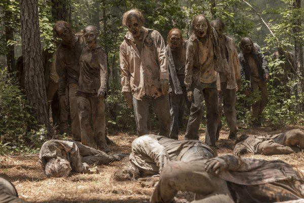 Le nom officiel de la nouvelle série d'Amazon officialisé — The Walking Dead